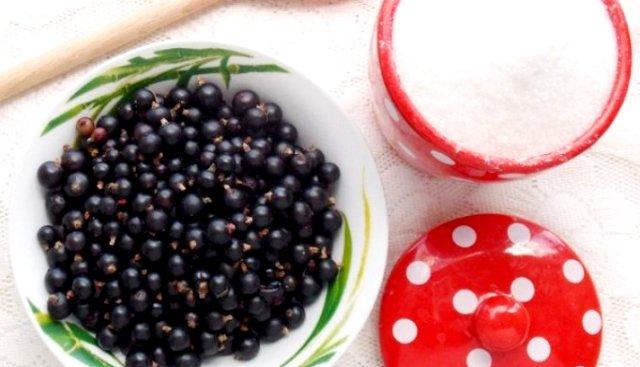 Смородина протертая с сахаром на зиму без варки