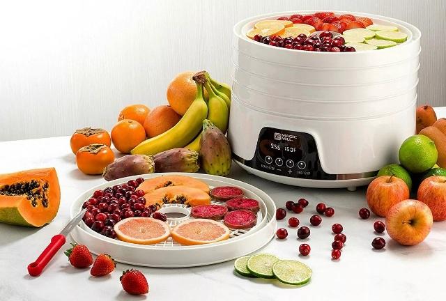 Какая сушилка для фруктов лучше