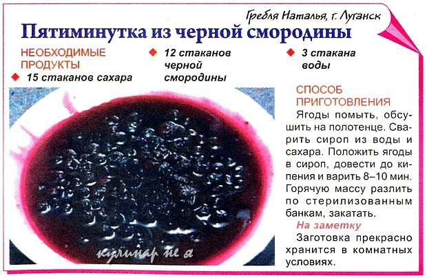 Смородина протертая с сахаром на зиму пятиминутка