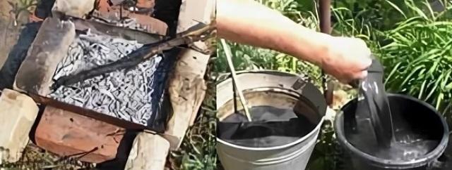 Органические вещества для подкормки помидоров после высадки в грунт