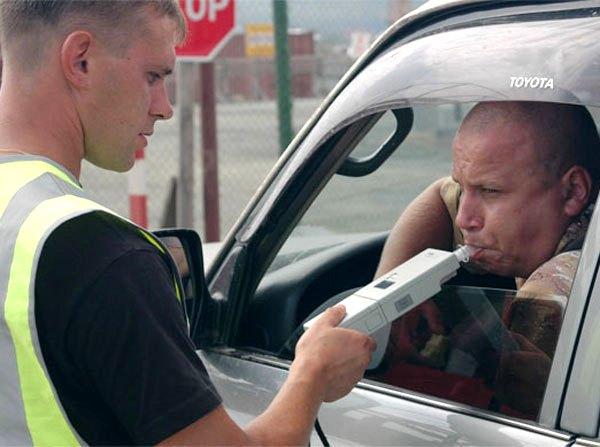Как принимать чайный гриб водителям транспортных средств