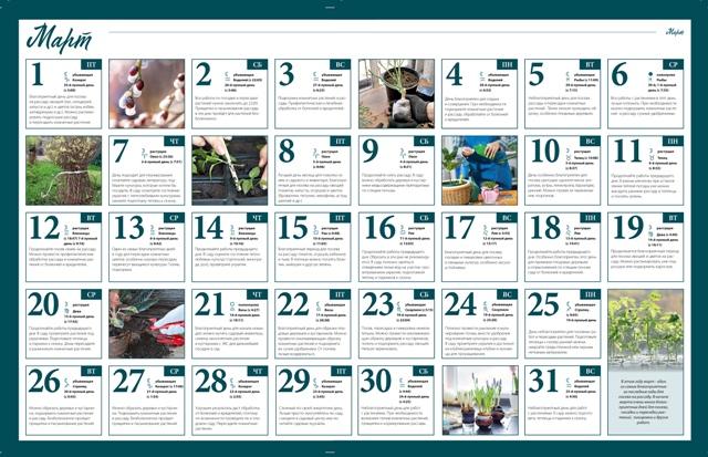 Лунный календарь для садовода и огородника на март