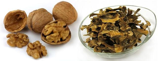 Перегородки грецкого ореха: полезные свойства
